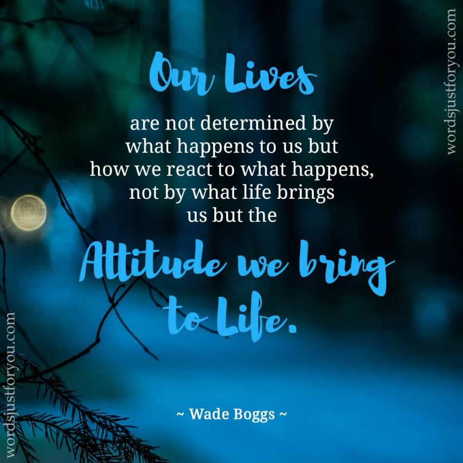 Attitude we bring to Life - Quote by J. Wade Boggs