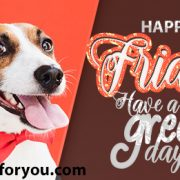 Happy Friday - Have a Great Day