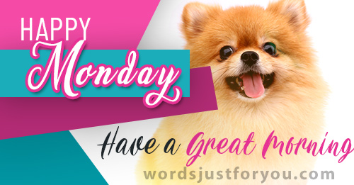 Happy Monday - Have a Great Morning