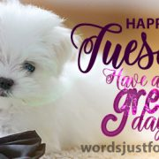 Happy Tuesday Image - Have a Great Day