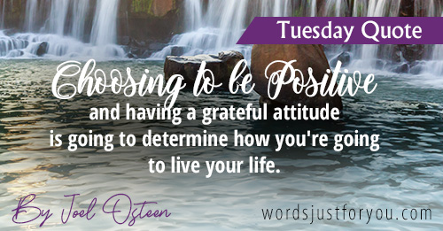 Tuesday Quote by Joel Osteen